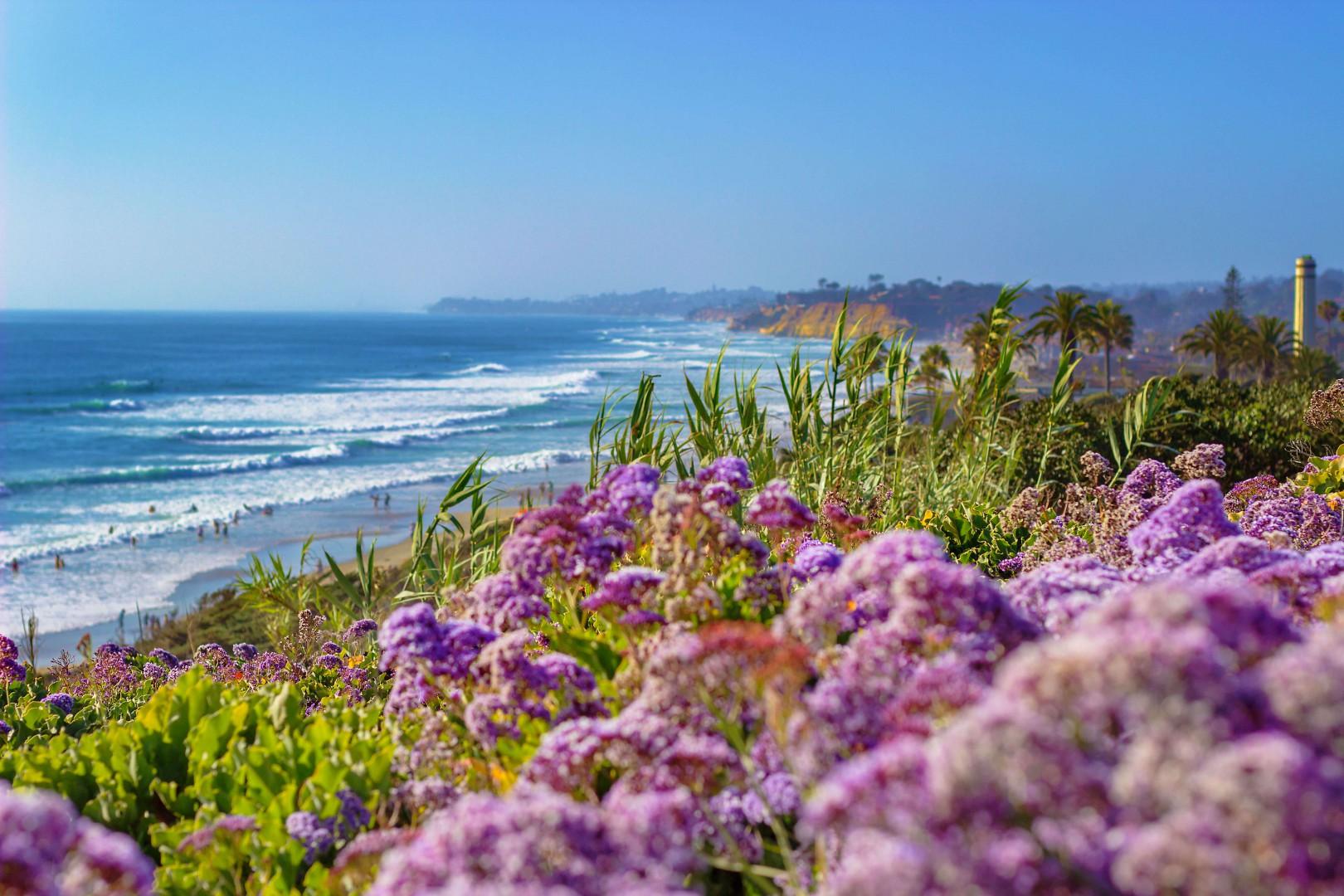 Beautiful beach view in Del Mar County California